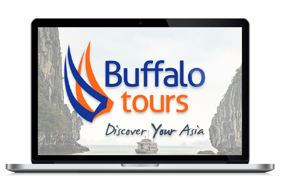 Buffalo Tours- Digital Nomad Design - Client Potfolio