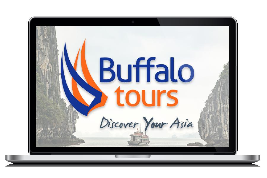 Buffalo Tours- Digital Nomad Design - Client Potfolio